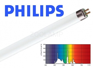 Świetlówka liniowa PHILIPS Master ActiViva Active 49W 1449mm 17000K 3700lm T5 8711500951816 KGO PHILIPS Lighting
