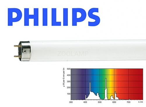 PHILIPS Master ActiViva Active 36W 1200mm 17000K 2750lm T8